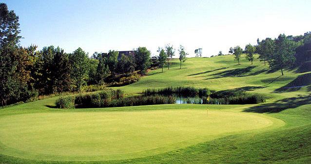 Golf-8_jpg